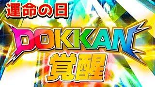【ドッカンバトル】悟飯覚醒!ついに運命の日を迎えることができました【dokkanbattle】 thumbnail