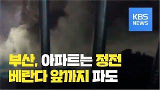 부산 제보 영상·CCTV로 본 태풍 '마이삭' / KB…
