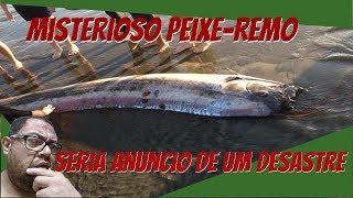 Misterioso peixe remo seria anuncio de um desastre!!!