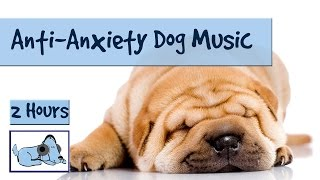 Cure your dogs anxiety with music! Upload videos of your dog fallin...