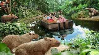 Video The Amazon River Quest @ River Safari Singapore (Full Ride, 1080p) download MP3, 3GP, MP4, WEBM, AVI, FLV Maret 2018