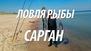 МОРСКАЯ РЫБАЛКА НА РЫБУ САРГАН С НОРМУНДОМ ГРАБОВСКИСОМ(Морская рыбалка с Нормундом Грабовскисом на рыбу сарган поплавочной снастью и спиннинг. Эффективные прима..., 2015-09-27T11:16:09.000Z)