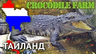 Тайланд 2013 #6 - Крокодиловая Ферма + Шоу крокодилов (Паттайя)