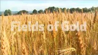 Fields of Gold: Lifting the Veil on Europe's Farm Subsidies