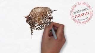 Как нарисовать лошадь простым карандашом поэтапно(как нарисовать лошадь, как нарисовать лошадь поэтапно, как нарисовать карандашом лошадь, как нарисовать..., 2014-08-07T05:38:38.000Z)