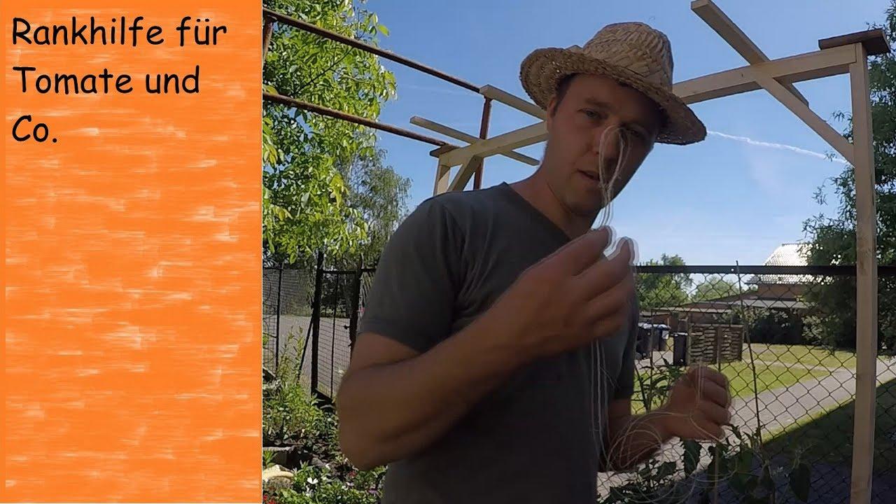 Klettergerüst Tomate : Die beste rankhilfe für tomaten layer tomatenrankhilfe youtube