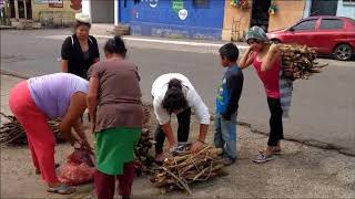 Estufa Chapina Bonita Hudson video 3 human drama