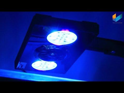 EcoTech Marine Radion XR30w Pro | REVIEW | MeerwasserLive TV