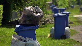 Мешканці Шепарівців нарікають, що фірма АВЕ тижнями не забирає сміття
