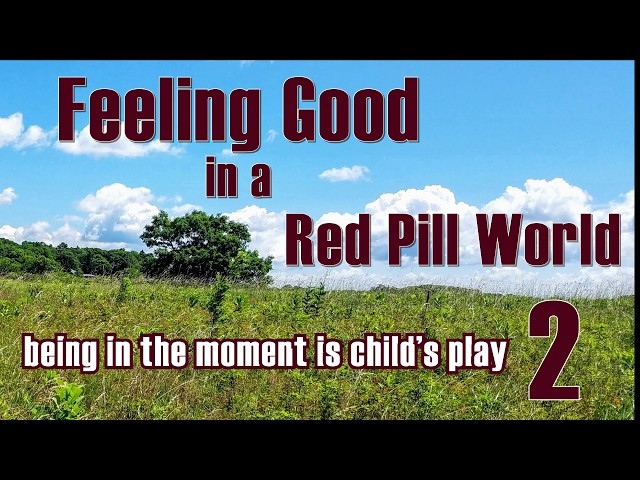 Feeling Good in a Red Pill World -  Feeling Good is Child's Play