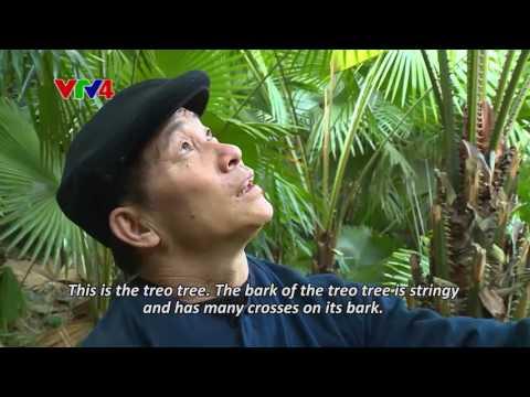 Colour of Ethnic Cultures - Tac Xinh dance