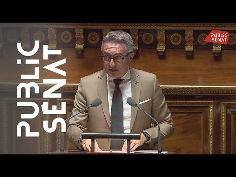 Immigration: Stéphane Ravier (RN) dénonce « l'immigration de peuplement pour assistés sociaux