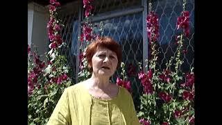 Отзыв. Ольга Железнова