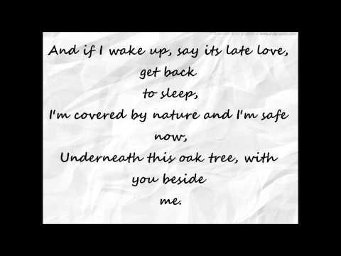 Ed sheeran Little bird lyrics