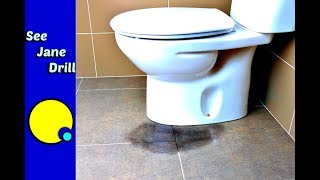 Anyone Can Fix a Leaky Toilet