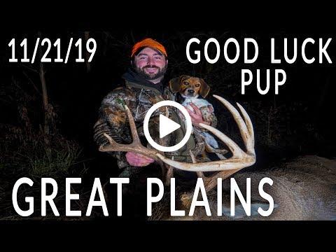 Great Plains   Good Luck Pup, Hitlist Bucks