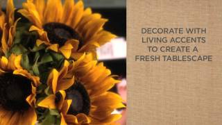 A Simple Style Guide To Coffee Table Decorations | Pottery Barn