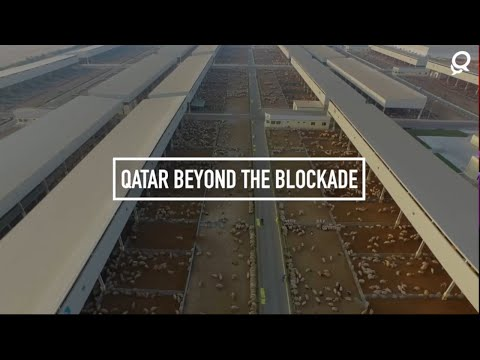 Qatar Beyond The Blockade - Baladna Farm