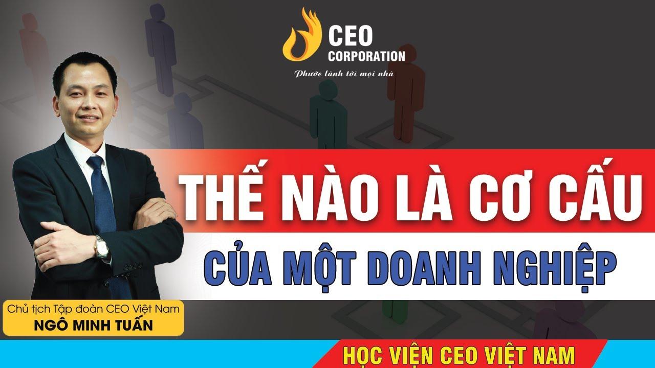 Thế Nào Là Cơ Cấu Tổ Chức Trong 1 Doanh Nghiệp  Vai Trò Của Từng Bộ Phận | Học Viện CEO Viêt Nam