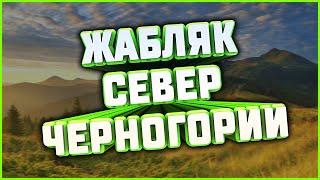 Север Черногории Жабляк Черное озеро Мост Джуржевича Каньон реки Тара Савин Кук 17 07 2020