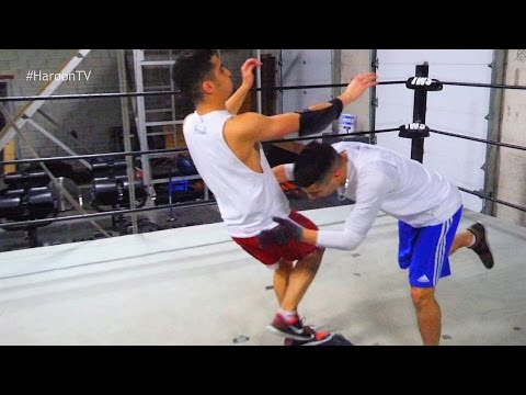 WWE MOVES IN THE RING
