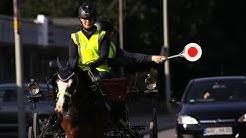 Pferdekutsche Mit Blinker