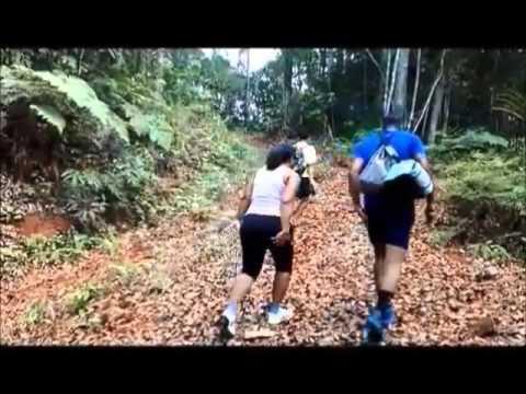 mt korobaba climb youngsters social club Fiji (pt