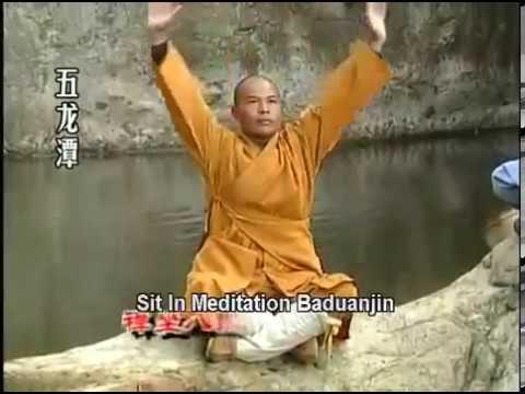 Shi de Yang - Appreciation of Shaolin Kung Fu 3