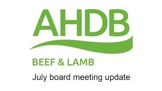 Board meeting update with Adam Quinney: July 2016