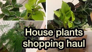 Download lagu Houseplants shopping from online॥indoor plants unboxing haul ॥ experience plants shopping online