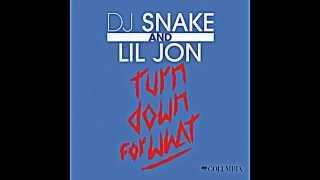 DJ Snake Lil Jon   Turn Down for What Audio