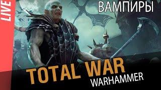 Total War Warhammer - Вампиры первый взгляд