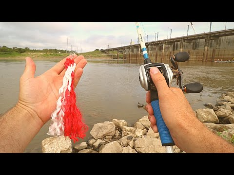 Catching WEIRD FISH With ROPE As BAIT | Ace Videos
