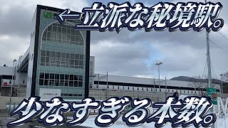 新幹線で最も行きにくい駅に行ってきた。