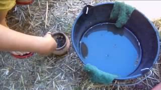 Cuisson dans de micro fours Raku - Stage poterie