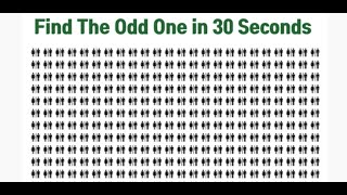 Find The Odd One in 30 Seconds…