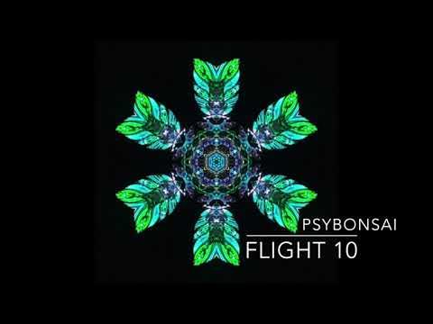 Progressive Psytrance Mix October 2018 (HD)----Flight 10