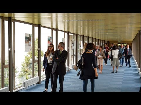 Student Stories | Geneva: The Habitats Within