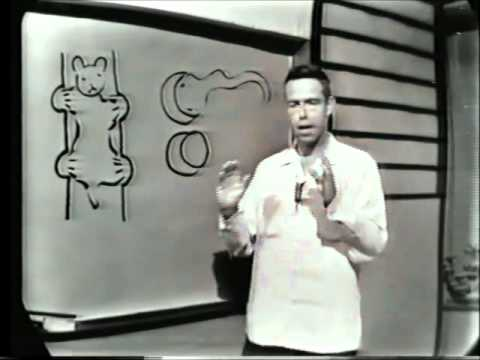 Alan Watts: Buddhism and Science (1960) [full length]