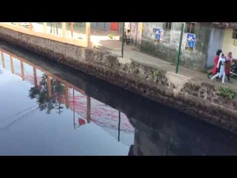 Canals of Cochin (Kochi) | Market Canal  2