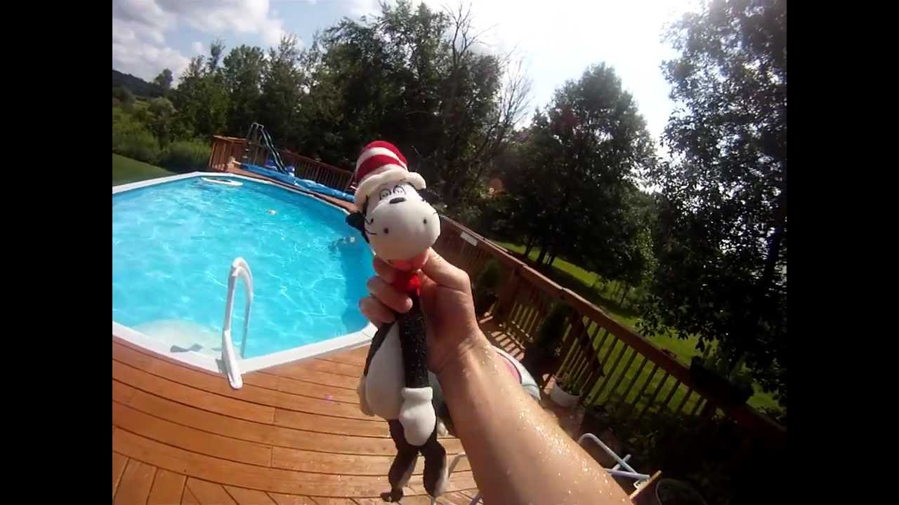 Cat In The Hat Saves Verne