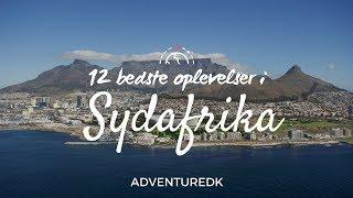 12 bedste oplevelser i Sydafrika - ADVENTUREDK