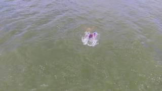 Mermaid caught on drone footage