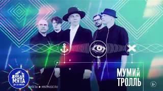 Мумий Тролль выступит на Дикой Мяте 2019