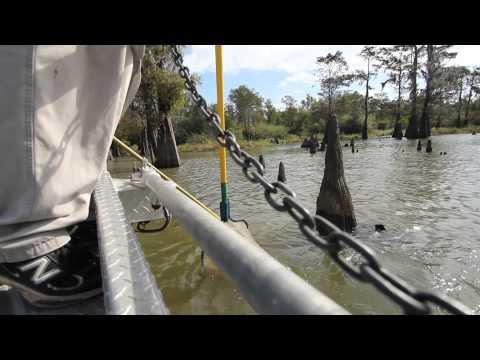 LDWF - Atchafalaya Basin Bass Limit