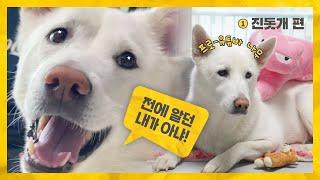 다시 만난 토종개 (Into The New K-DOG)…