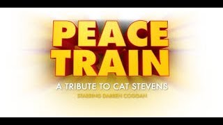 Fredrick Jacobs -  PEACE TRAIN - A Tribute Remix