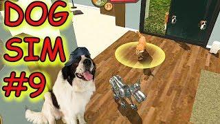 Dog Sim #9. Я - РОБОПЕС. Летсплей Симулятор собаки онлайн. Булат играет в игры