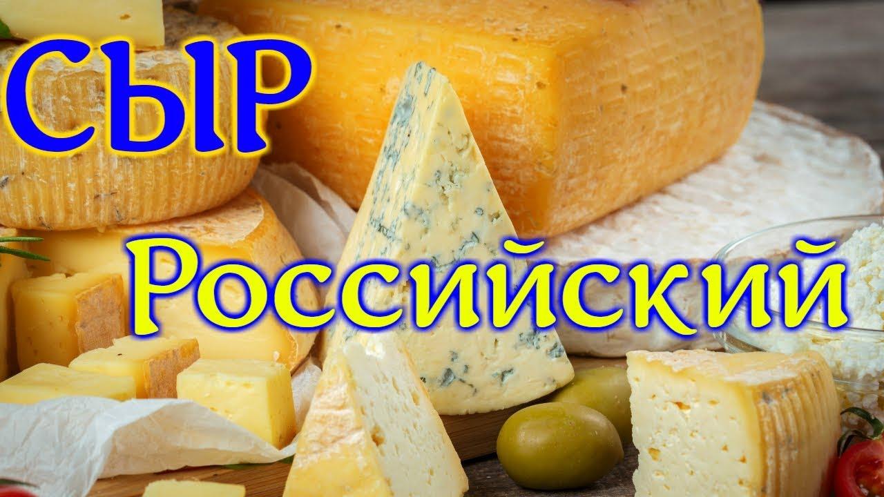 Как сделать российский сыр фото 646