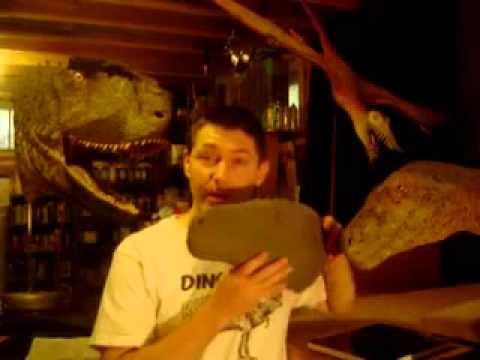 Kickstarter: Herrerasaurus reward.mov